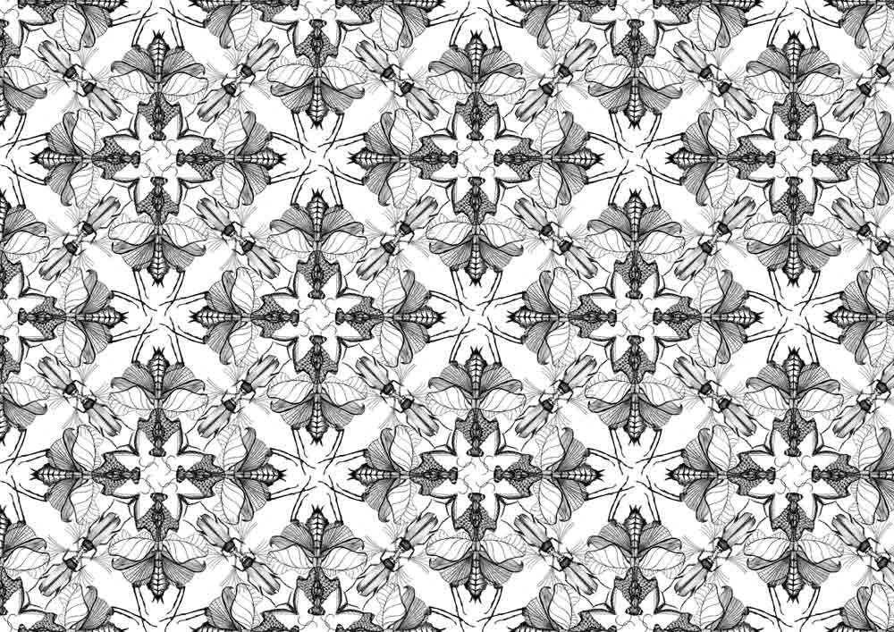 Pauline-Huard-design-textile-stylisme-illustration-graphisme-insecta-all-over-4